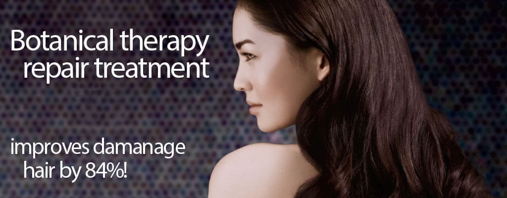 d_201109_Banner_Aveda_Botanical_Therapy